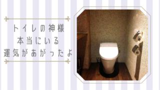 トイレの神様 運気