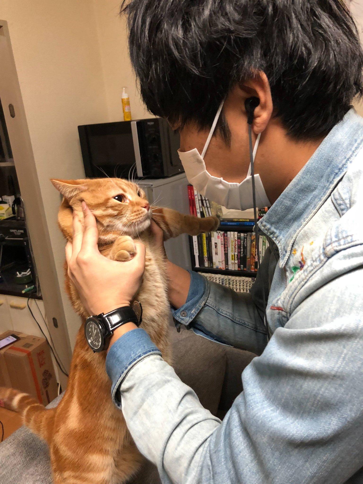 東ブクロ 猫アレルギー